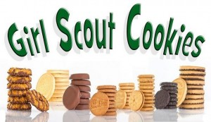blog post girl scouts